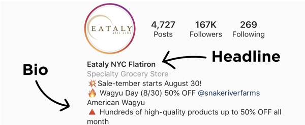 Bio and headline on the Instagram profile