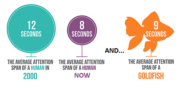 Attention span in the digital world